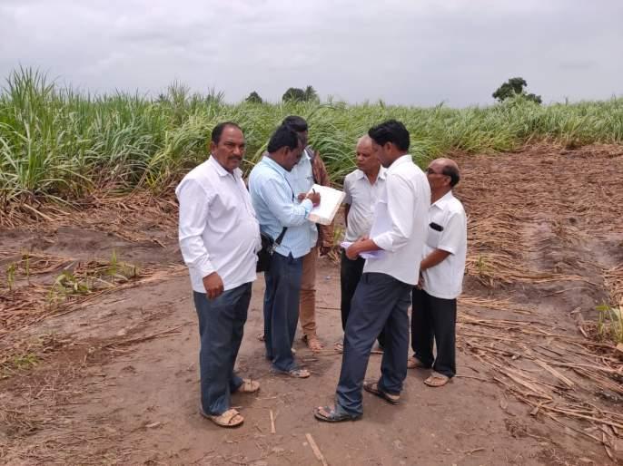 The loss of rain due to premature rainfall is complete   आवकाळी पावसामुळे झालेल्या नुकसानीचे पंचनामे पुर्ण