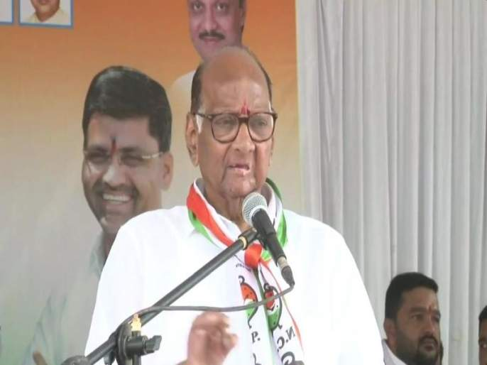 Maharashtra Election 2019: Don't let BJP people stand in the door due to huge loss of farmers, industries due to government: Sharad Pawar | Maharashtra Election 2019: शेतकऱ्यांचे अन् उद्योजकांचे नुकसान करणाऱ्या भाजपाला दारातही उभं करु नका: शरद पवार