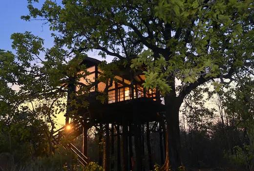 Nature tourism of Pench, Bor, Umred is also green | पेंच, बोर, उमरेडच्या निसर्ग पर्यटनालाही हिरवी झेडी