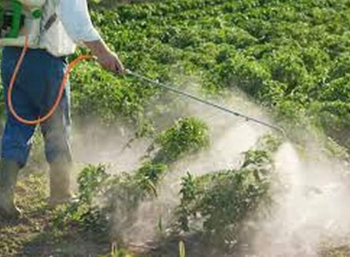 Farmers deprive abaut guidance of pesticide spraying | किटकनाशक फवारणीच्या मार्गदर्शनाबाबत उदासीनता