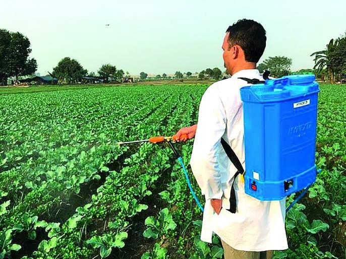 Ban on sale, distribution and use of 'pesticides' in Amravati Revenue Department | अमरावती महसूल विभागात 'या' प्रकारच्याकीटकनाशकांचीविक्री, वितरण व वापर करण्यास बंदी