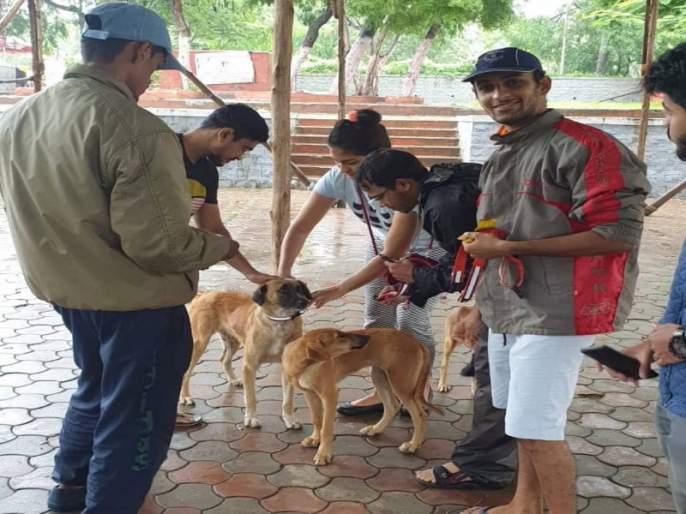 The 'Reflective Caller' - a life save from accident by dogs | श्वानांपासूनच्या अपघातांवरची प्राणरक्षक 'रिफ्लेक्टिव्ह कॉलर'....
