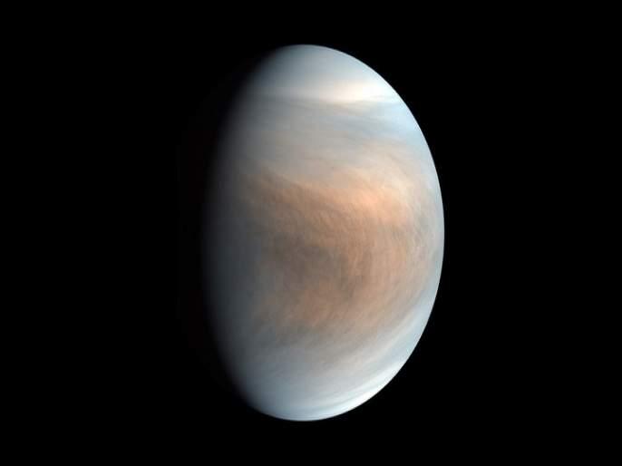 Scientists spot potential sign of life in Venus atmosphere | 2020 चा आणखी एक धक्का, वैज्ञानिकांनी वर्तवली 'या' ग्रहावर एलियन लाइफ असण्याची शक्यता