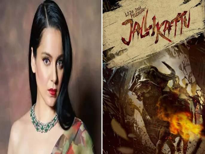 Kangana Ranaut congratulate Jallikattu and took a dig at movie mafia | कंगना रनौतने 'जल्लीकट्टू' ऑस्करला गेल्यावर पुन्हा मुव्ही माफियांवर साधला निशाणा, म्हणाली -...