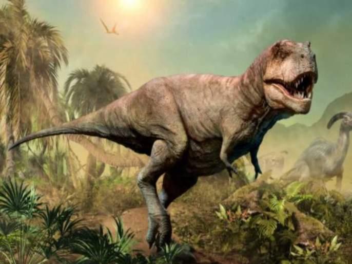 Dinosaur reached on moon before humans know how it happened | काय सांगता! मनुष्यांआधी चंद्रावर डायनासॉर पोहोचले होते, जाणून घ्या हे नेमकं झालं कसं...