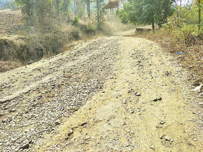 The plight of roads in the tribal areas | आदिवासी भागातील रस्त्यांची दुर्दशा