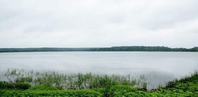 In West Vidarbha, the water resources of the projects were averaging around 80 % | पश्चिम विदर्भातील प्रकल्पांचा पाणीसाठा सरासरी ८० टक्क्यांवर स्थिरावला