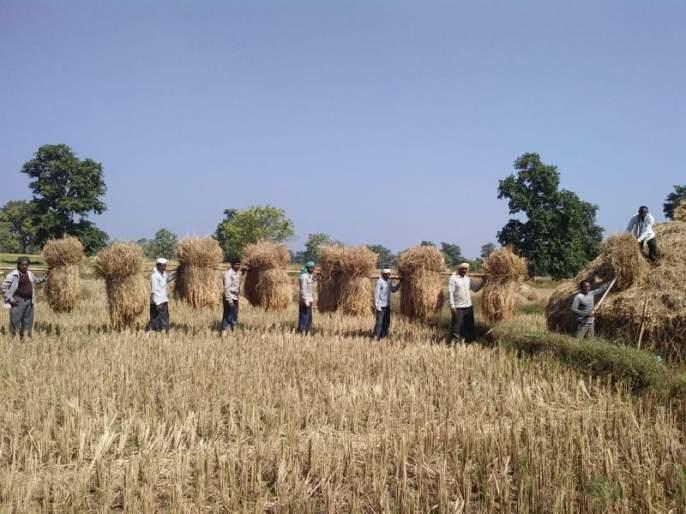 In Amravati region, 22.44 lakh hectares are affected | अमरावती विभागात २२.४४ लाख हेक्टर बाधित, १५४३.६७ कोटींची मागणी