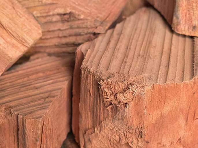 75 kg of sandalwood seized at Mumbai airport | मुंबई विमानतळावर ७५ किलो चंदन जप्त
