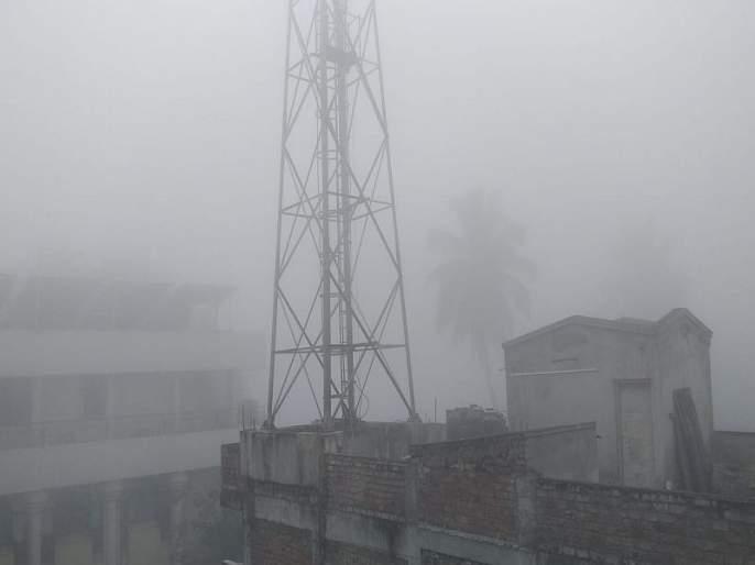 A sheet of smoke spread over Sangli; A sudden change in climate | सांगलीवर पसरली धुक्याची चादर;हवामानात अचानक बदल