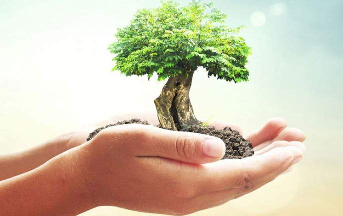 Drive to save tree in Khamgaon | खामगावात ७५० झाडे जगविण्यासाठी अनोखी धडपड!