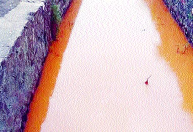 Paddy cultivation endangered due to discharge of chemical wastewater into nala | रासायनिक सांडपाणी नाल्यात सोडल्याने भातशेती धोक्यात