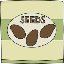 The problems of Seeds Park have been solved | सीड्स पार्कच्या अडचणींचा तिढा सुटला