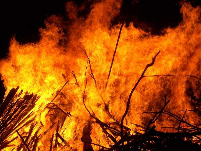 Three of the tribal people died in the fire, and two tongs died in the fire | आदिवासींच्या तीन झोपड्यांना आग, आगीत दोन चिमुकल्या मुलींचा मृत्यू