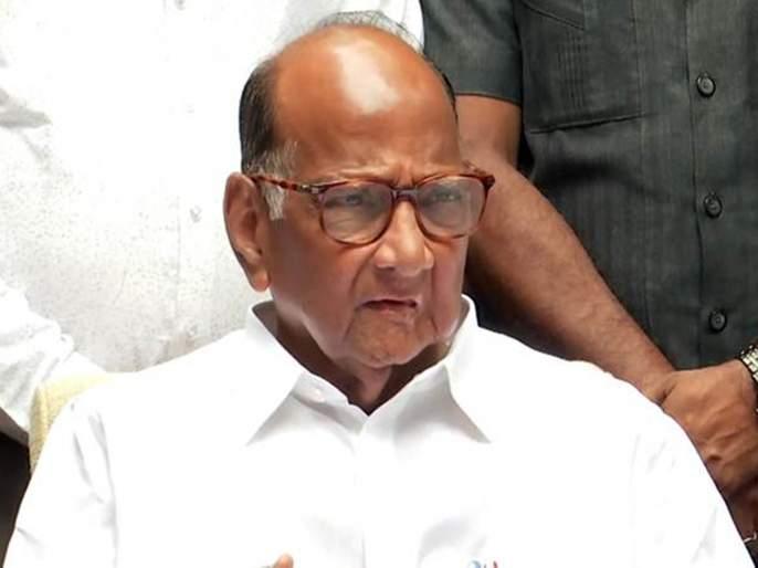 Ratnagiri Mayor Election Shiv Sena MLA said Sharad Pawar will meet | रत्नागिरी नगराध्यक्ष निवडणुक: राष्ट्रवादीच्या पाठींब्यासाठी पवारांची भेट घेणार: आमदार सामंत