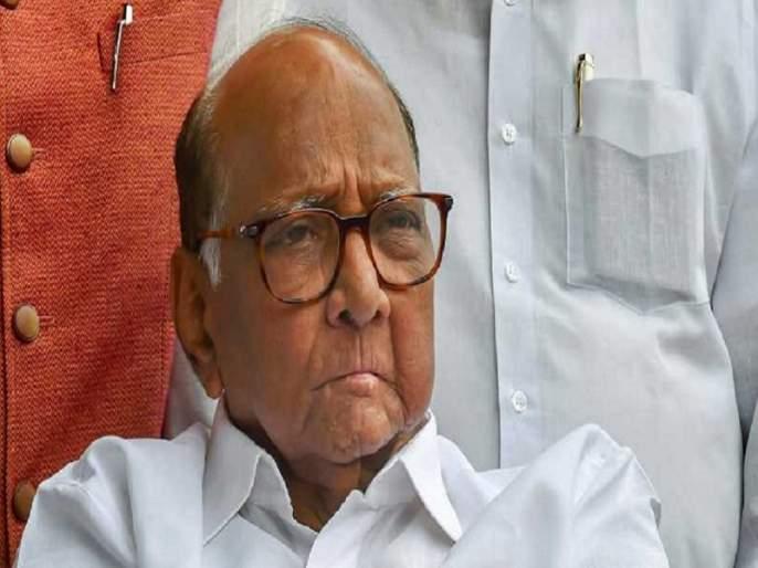 Sharad Pawar will be fortified in Nashik   नाशकात शरद पवारच करणार तटबंदी