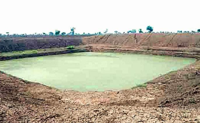 Maharashtra Vidhan Sabha 2019 - When will I get a farm grant?   Vidhan Sabha 2019: शेततळ्याचे अनुदान कधी मिळणार?