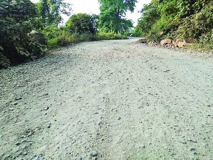Roads in Shriwardhan taluka have been cleared | श्रीवर्धन तालुक्यातील रस्त्यांची झाली चाळण