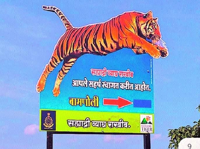 Awareness about wildlife through the picture pane .. | चित्र फलकांमधून वन्यप्राण्यांबाबत जनजागृती..