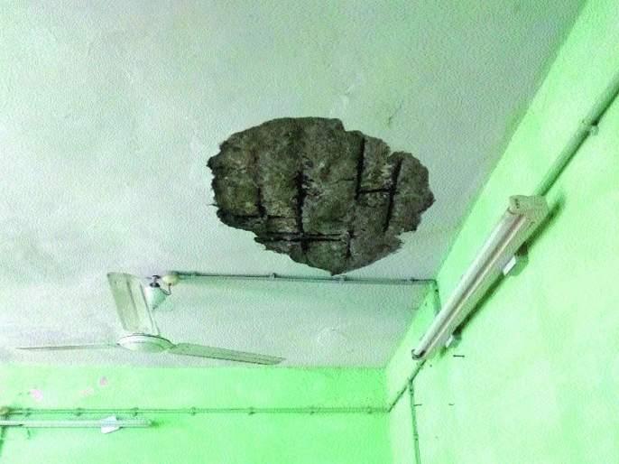 Roof plaster collapses in Dombivali center | अग्निशमन जवानांचेही जीव टांगणीला! डोंबिवली केंद्रातील छताचे प्लास्टर कोसळले