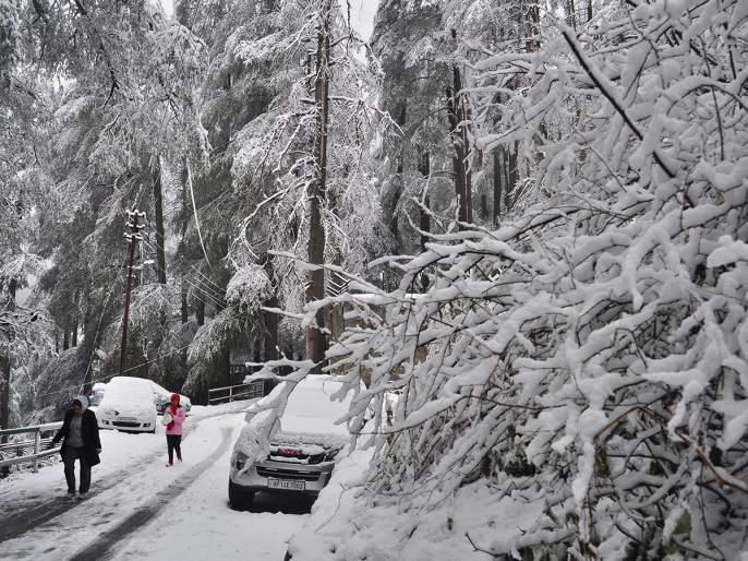 Heavy snowfall continues in Kashmir, Himachal Pradesh, Uttarakhand | काश्मीर, हिमाचल प्रदेश, उत्तराखंडात प्रचंड हिमवृष्टी सुरूच