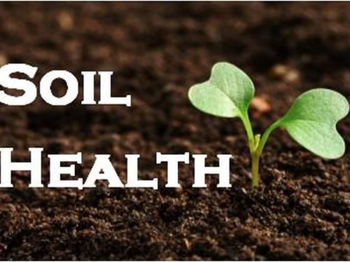 Soil health improves soil texture | 'मृदा आरोग्य' मुळे जमिनीची पोत सुधारली
