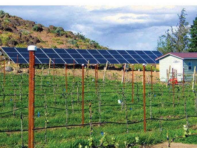 The concept of solar power project to connect electricity to agriculture was lost in the air | कृषीपंपांना वीज जोडणीसाठी सौर विद्यूत प्रकल्पाचा संकल्प हवेतच विरला