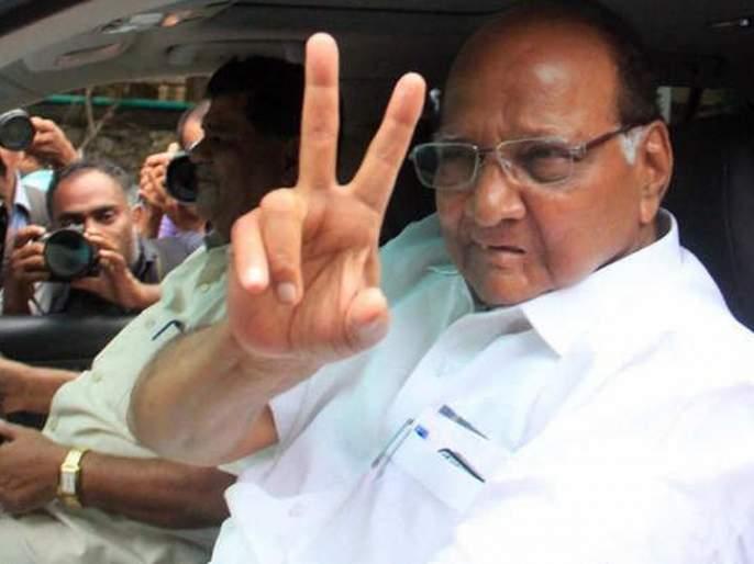 Maharashtra Vidhan Sabha Result: Sharad Pawar's 'power' appeared in the assembly election results, NCP's half-century in vidhan sabha   महाराष्ट्र निवडणूक निकालः शरद पवारांनी जिंकून दाखवलं, साताऱ्यासह 50 जागांवर 'राष्ट्रवादी पुन्हा'