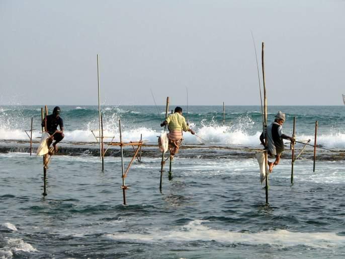 Fisheries production decreased by 22.5% in the state | राज्यात मत्स्य उत्पादनात झाली २२.५ टक्के घट