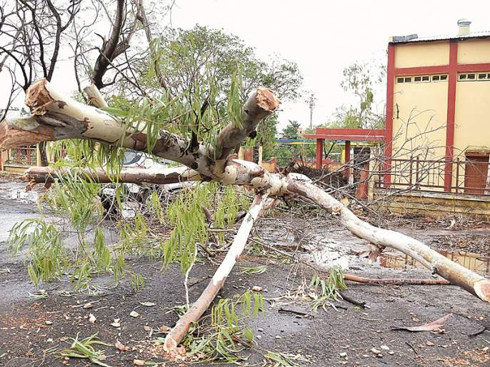 Aurangabad hit by storm wind; Two dead in a wall collapsed | औरंगाबादला वादळी वाऱ्याचा तडाखा; भिंत पडून दोन ठार