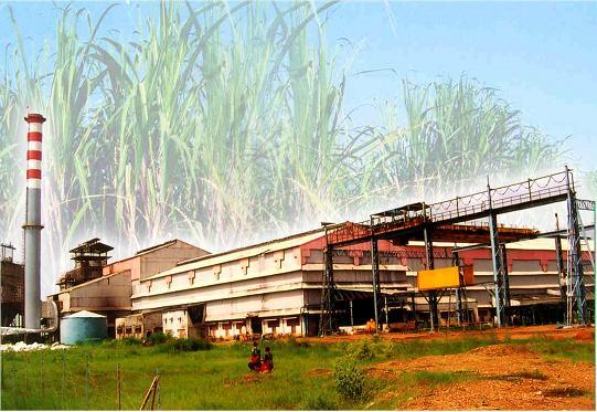 516 crore loan guarantee for 32 sugar mills; Decision of the State Government | ३२ साखर कारखान्यांच्या ५१६ कोटींच्या कर्जाला हमी; राज्य शासनाचा निर्णय