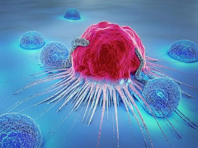 Smoking cannabis increases testicular cancer risk | १५ ते ३५ वयोगटातील तरूणांमध्ये 'या' कारणाने वाढतोय Testicular cancer