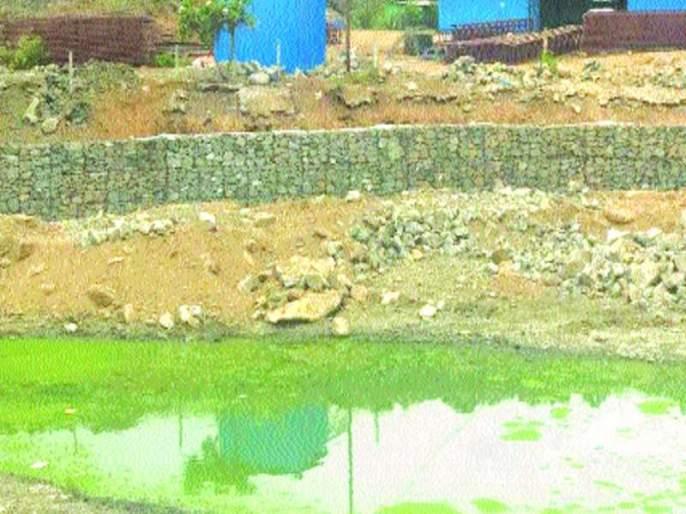 Navjadwani will get Turfepada lake of thane | तुर्फेपाडा तलावाला मिळणार नवसंजीवनी