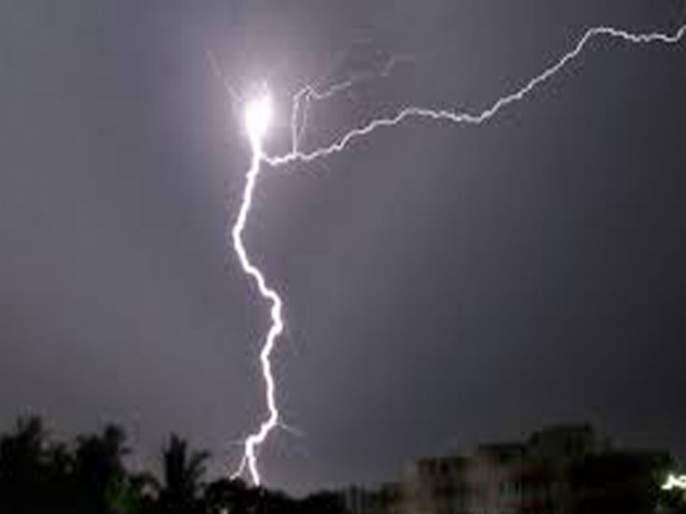 In Jalgaon district, the power of the plant collapsed | जळगाव जिल्ह्यात शेतक-याच्या अंगावर कोसळली वीज