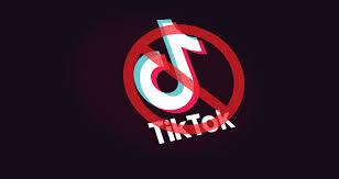 tiktok ban - Who exactly are the tiktokers? | टिकटॉकर्स नक्कीकोणअसतात ?