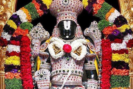 Padmavati Mother's last tradition of sari-choli from Padmashali brothers | सोलापुरातील पद्मशाली बांधवांकडून पद्मावती मातेला साडीचोळीच्या आहेराची परंपरा