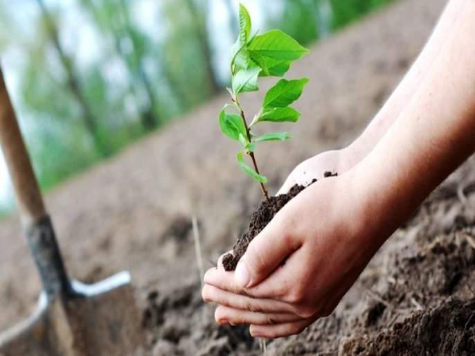 Kho in Samrudhi Highway tree planting   समृध्दी महामार्गाच्या वृक्ष लागवडीत खो
