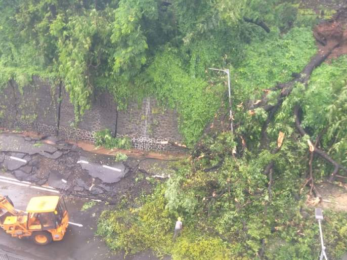 Trees fell in 361 places, 3 thousand 202 calls came in 1916, 2 people died | ३६१ ठिकाणी झाडे कोसळली, १९१६ वर आले ३ हजार २०२ कॉल, २ जणांचा मृत्यू