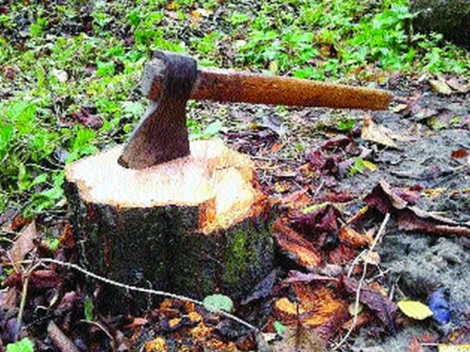 Parbhani-Pathari road: Trees broken down; Only the road works | परभणी-पाथरी रस्ता :झाडे तोडली; मात्र रस्ता काम रखडले