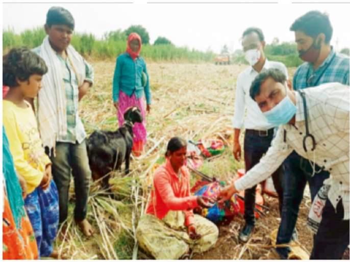 Shocking! In the sugarcane field, 73 pregnant women are running koyata | धक्कादायक ! उसाच्या फडात ७३ महिला गरोदरपणात चालवताहेत कोयता