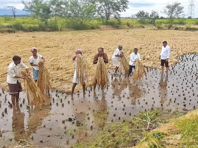 Maharashtra Government: Farmers prefer instead of bullet trains; Role of Development Leadership | Maharashtra Government : बुलेट ट्रेनऐवजी शेतकऱ्यांना प्राधान्य; महाविकास आघाडीची भूमिका