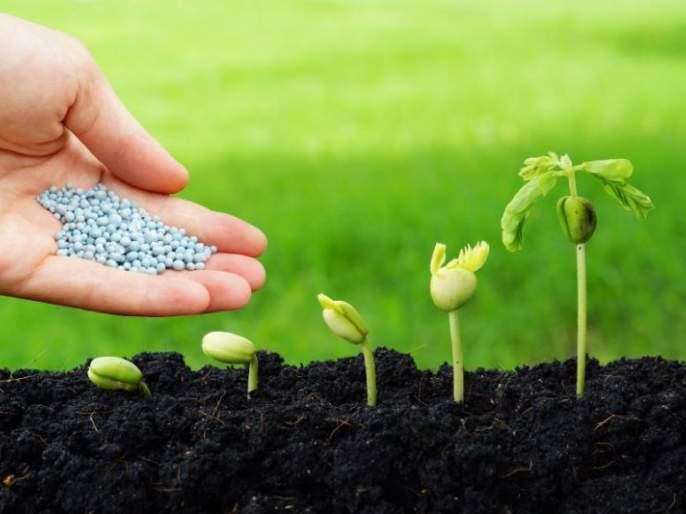 Use of 'nanotechnology' on crops now!   पिकांवर आता 'नॅनो टेक्नालॉजी'चा वापर !