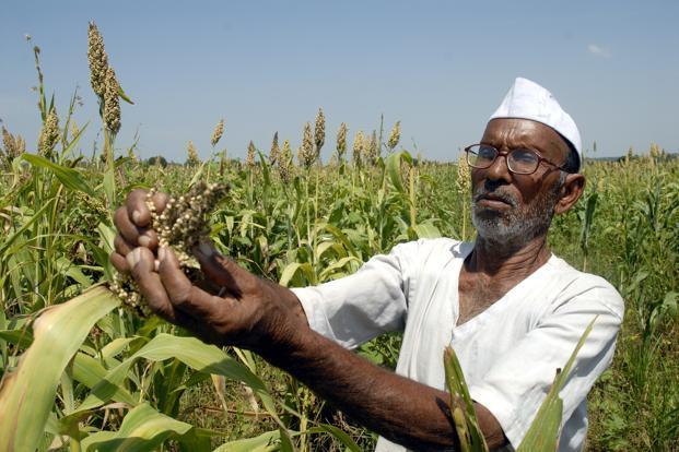 Now farmers up to five hectares will get benefits, increase in finance, Devendra fadanvis approve proposal | आता पाच हेक्टरपर्यंतच्या शेतकऱ्यांना मिळणार लाभ, अर्थसहाय्यातही वाढ