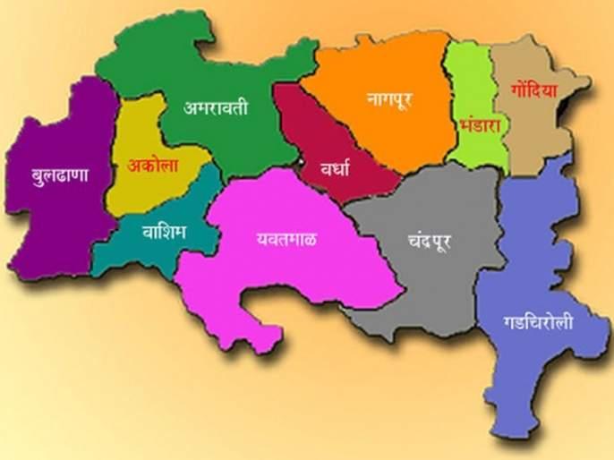 Maharashtra Assembly Election 2019: Chief Minister's way through Vidarbha | Maharashtra Assembly Election 2019 : विदर्भातूनच जाणार मुख्यमंत्रिपदाचा मार्ग