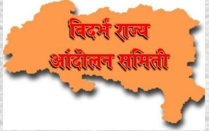 The loot of citizens in the name of electricity bill: Vidarbha Rajya Andolan Samiti's allegations | वीज बिलाच्या नावावर नागरिकांची लूट : विदर्भ राज्य आंदोलन समितीचा आरोप