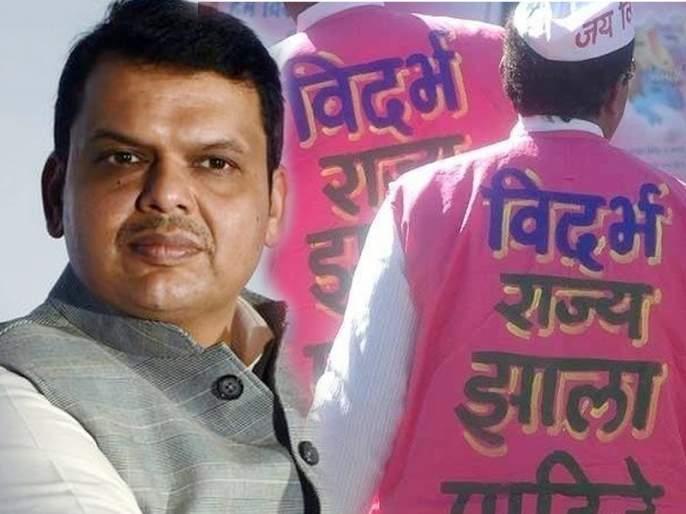 Maharashtra Vidhan Sabha Election 2019: Separate Vidarbha supporters are getting ready for Assembly Election | विदर्भवाद्यांना विधानसभेचे वेध; दिग्गजांना घाम फोडणार की 'डिपॉझिट'ही जाणार?