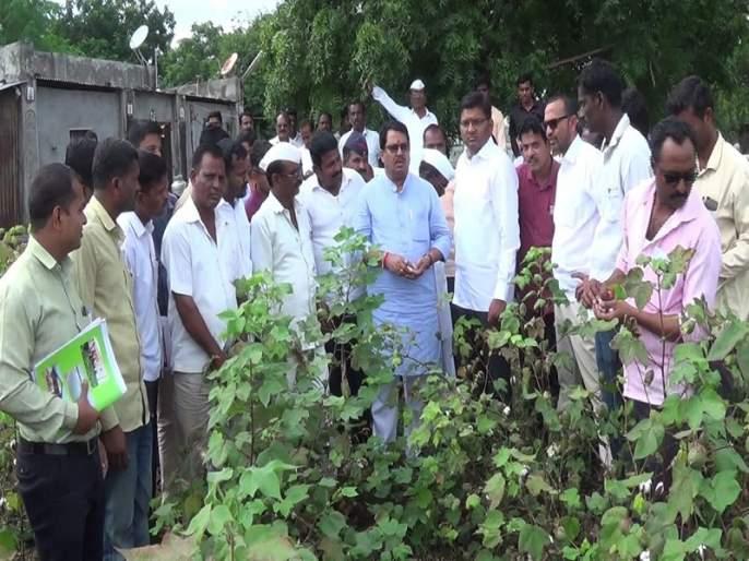 Immediate irrigation should be done on the evidence of the crops - Vijay Vadettiwar | पिकांचे पुराव्यानिशी तातडीने पंचनामे करावेत-विजय वडेट्टीवार
