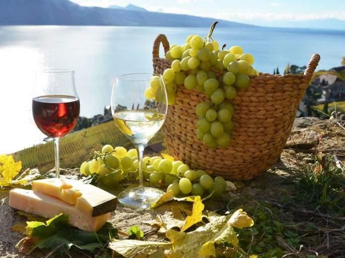Wine grapes could also be hit by 10 to 15 per cent production with return rains | परतीच्या पावसाने वाईन ग्रेप्सलाही फटका, 10 ते 15 टक्के उत्पादन घटण्याची शक्यता