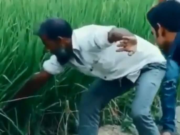 Viral video posted by diljit dosanjh know the reality of snake catching prank | Video : शेतातून बाहेर काढत होता साप अन् पुढे जे झालं...