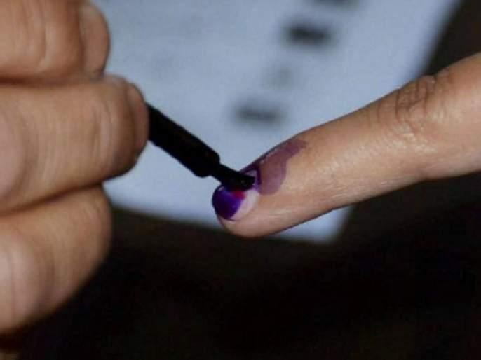 delhi citizen over 80 years of age would vote from home | 'वोट फ्रॉम होम'! 'या' शहरातील वयोवृद्धांना करता येणार घरबसल्या मतदान